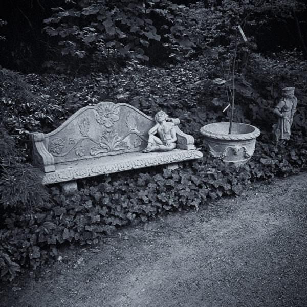 Ulriksdals Trädgårdar
